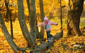 foto-autumn32