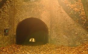 foto-autumn37