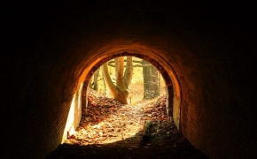 foto-autumn44