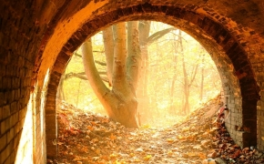 foto-autumn47