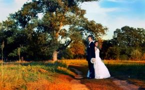 svadba-foto23