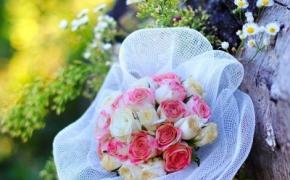 svadba-foto5