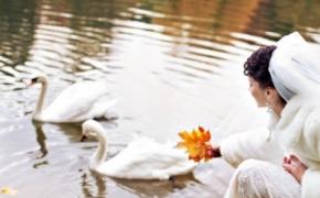 foto-svadba (13)
