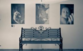 vystavka-semya-v-radost (4)